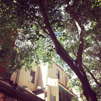 CBD courtyard