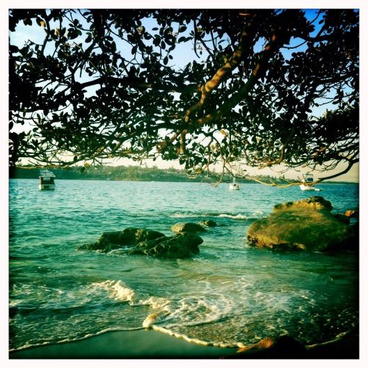 1 rock beach