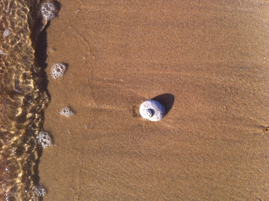 9 shell 3